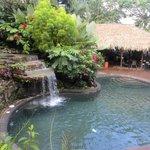 Villas/Bungalow pool