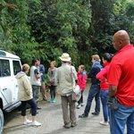 Half-day tour, Mount Brinchang