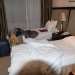 Room (standard economic)