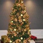 Christmas Tree @ Manhattan Club