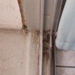 Porte fenêtre avec sa couche de poussière !