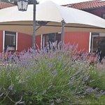 Photo of Agriturismo Bacca Blu