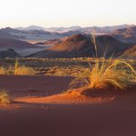 From the top of the dunes: off road trip from Sossuvlei