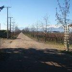 ruta acceso
