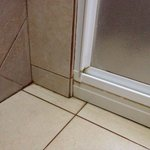 Bathroom floors-- not exactly clean- moldy