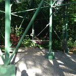 Hammocks under the Yiguirro Tree House