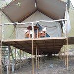 My luxurious safari tent, Tent 2