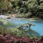 Creek Runs Blue