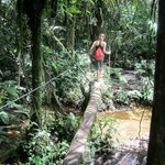 Past the waterfall, the path is less developed and you take some log bridges