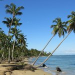 Playas agrestes