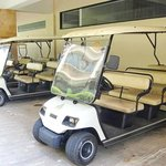 they golf carts they ferry you around in to tyour room and back