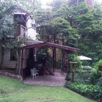 the cottage sits in a wonderful treed yard full of bird life