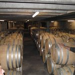 Kumeu River Winery - excellent wines waiting for you!