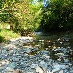 la rivière au bord du camping