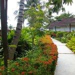 Gången till Andamansjön