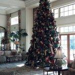 Christmas tree set up