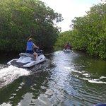 Entering a mangrove