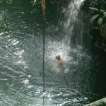 Swimming up to a waterfall