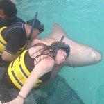 Besos con Tiburon
