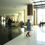 Zona de recepción y salas comunes