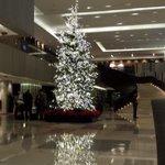 Lovel lobby area
