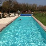 25m heated pool