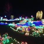2013 Garden d'Lights
