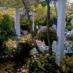 Autumn at Parkside on Ellery