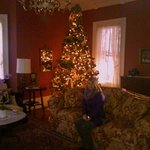 Chrissy near the Christmas tree in the living room.