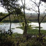 Photo of Machan Paradise View