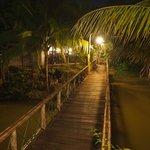 Walkway at night.
