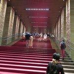 入り口を入ったところに絨毯の敷いた階段。エスカレーターもあります