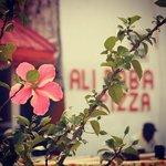 Alibaba garden kololi gambia