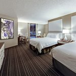 Newly Renovated Double Guestroom