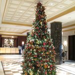 Christmas Tree in the lobby quite festive