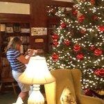 the christmas tree 2013