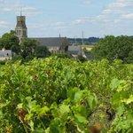 Loire Beauty