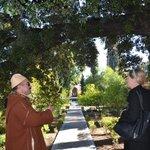 gardens of Museum Batha