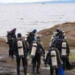A shore dive excursion