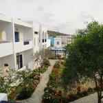 Blick vom Balkon in den Innenhof der Hotelanlage (der Pool ist hinter dem Baum)