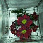 Dettaglio fiori freschi