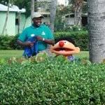 Hiding Rubber Duckies with Ernie