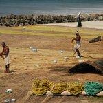 Fishermen preparing the nets
