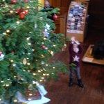 Large 2 storey Christmas tree