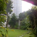 Jardín 2