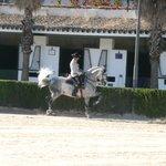 The Royal Equestrian School in Jerez
