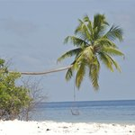 Rinbodhoo, l'altalena sulla spiaggia