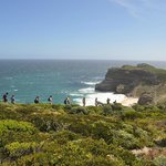 Hike to Cape of Good Hope