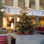 Christmas tree in the hall