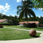 Sugar Cane Gardens